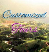 Customine tours