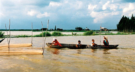 mekong-delta-tours-introduced